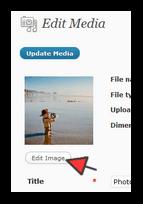 wordpress-header-image-001